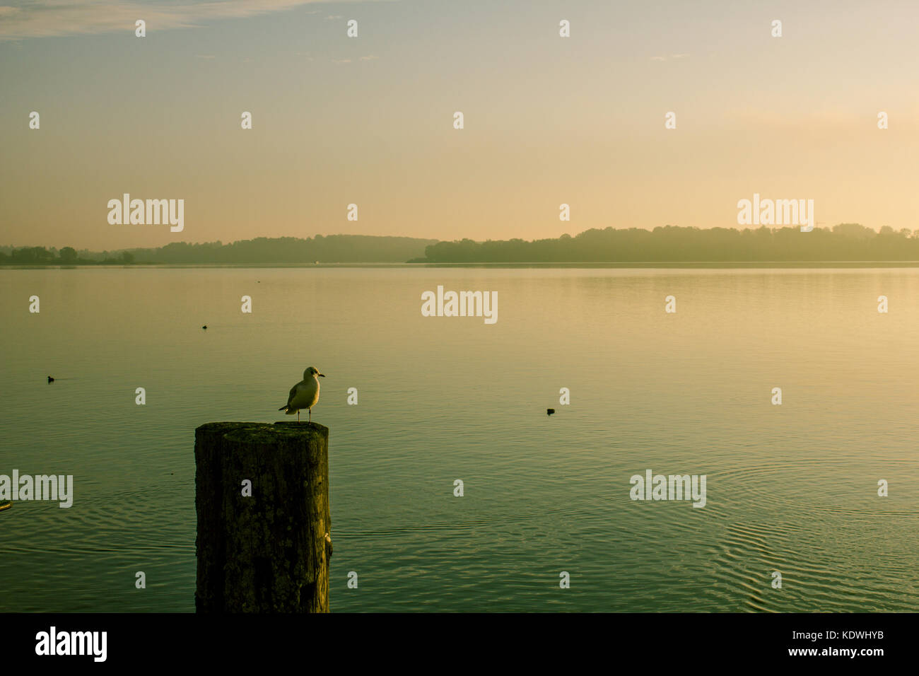 A view of Chiemsee lake, on Prien am Chiemsee, Bavaria, Germany Stock Photo