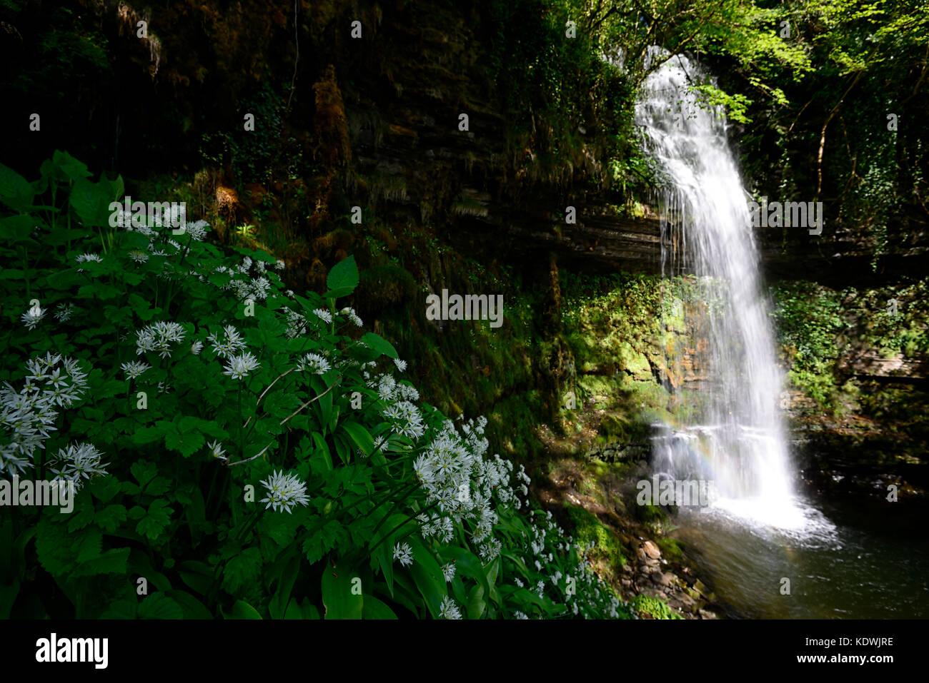 Glencar Waterfall, Inspire, Inspiration, The Stolen Child, poem, poetry, William Butler Yeats, County Leitrim, Ireland, - Stock Image