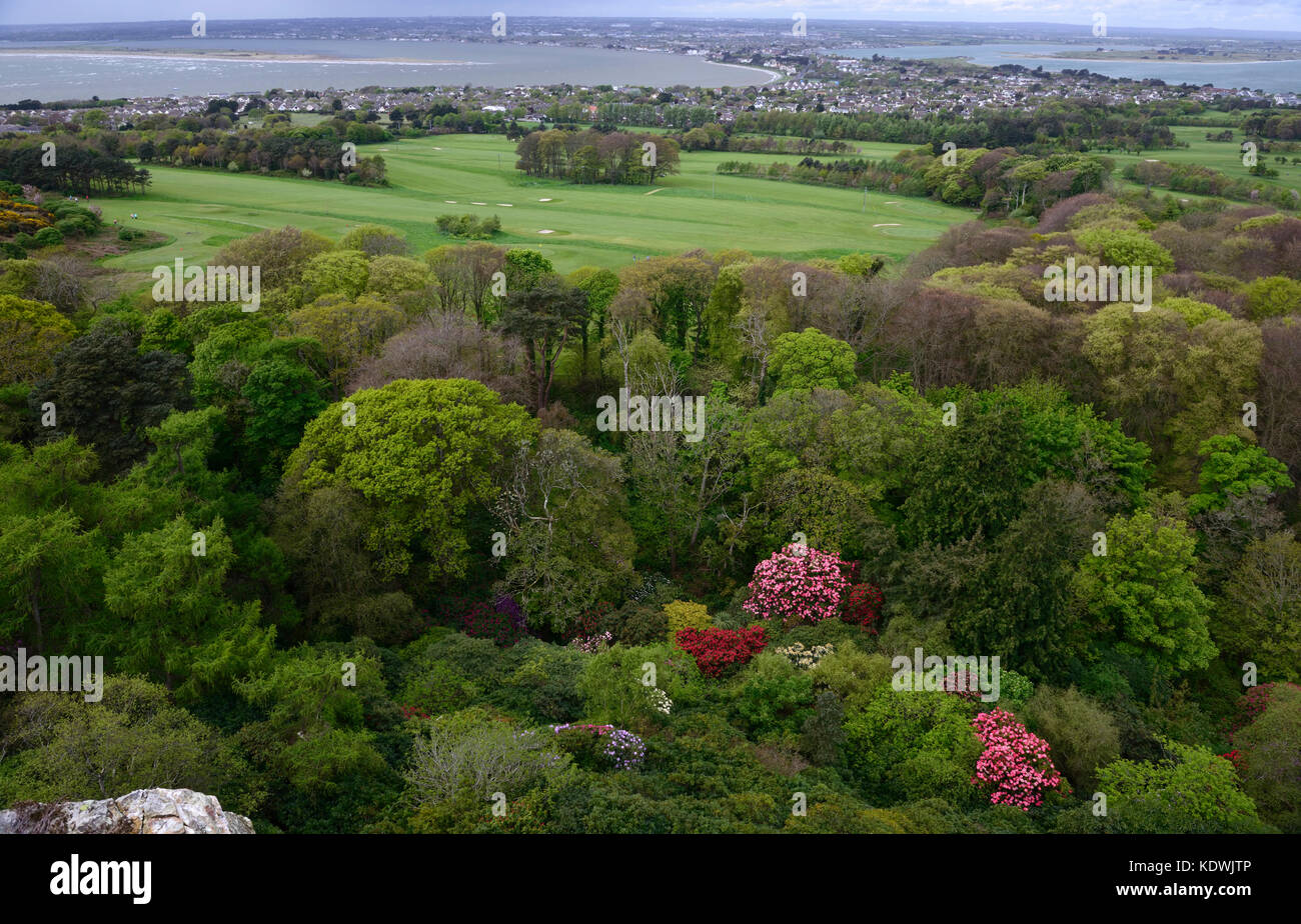 Howth castle, Golf Course, Coastline, Coastal, golfing, sport, sports, coast, scenery, Rhododendrons, Flower, Flowering, - Stock Image