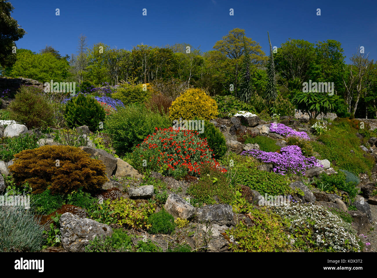Alpine Gardens, Alpine Garden, Walled Garden, Lissadell House,  Neo Classical Greek Revivalist Style, Country House, Wild Atlantic Way,  Sligo, Ireland,