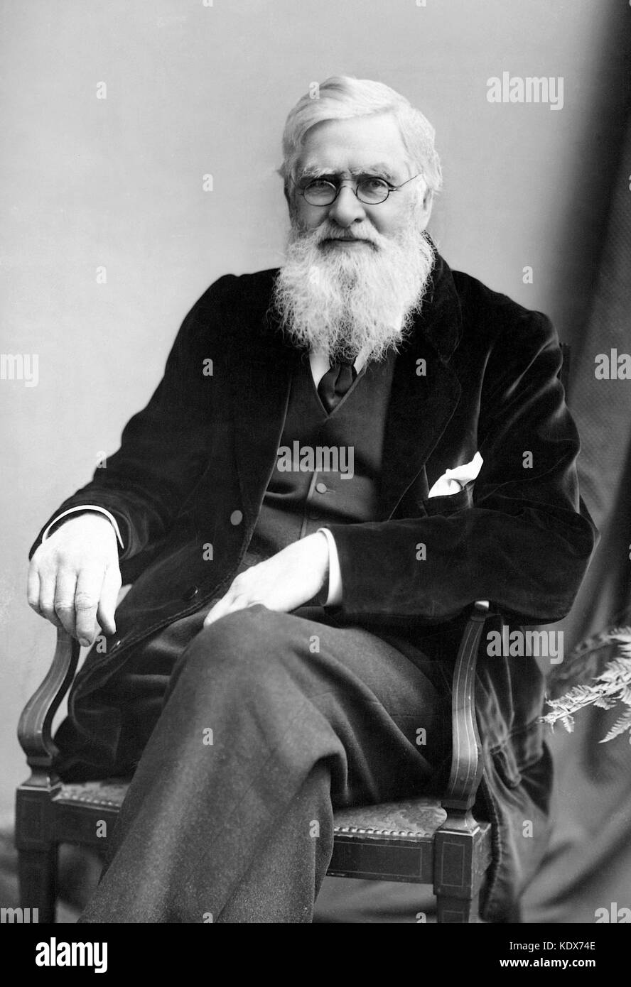 Alfred Russel Wallace, British naturalist, explorer, geographer, anthropologist, and biologist - Stock Image