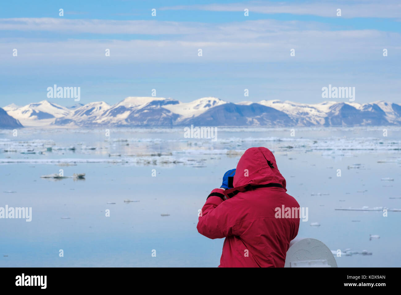 Cruise passenger tourist looking at sea ice from offshore on east coast of remote Spitsbergen island, Svalbard, - Stock Image