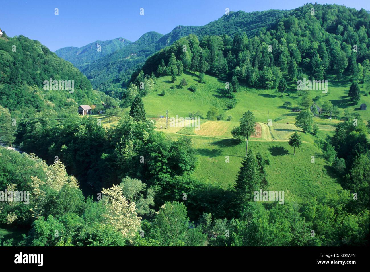 Slowenien, Brezice, Hügelland Kozjansko nördlich von Brezice - Stock Image