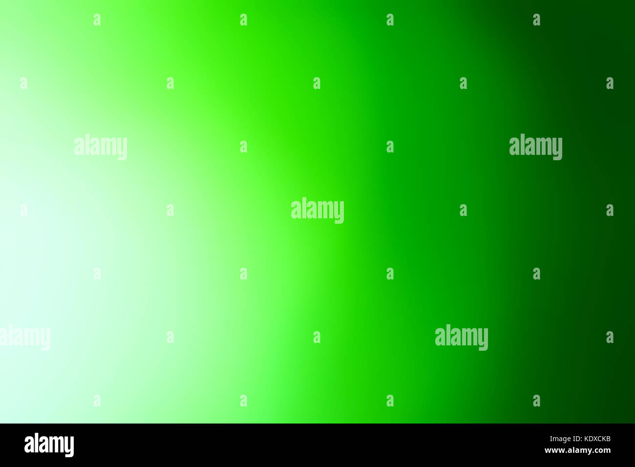 abstract green background . shine background with soft focus and a blur . green decorative empty design element, - Stock Image