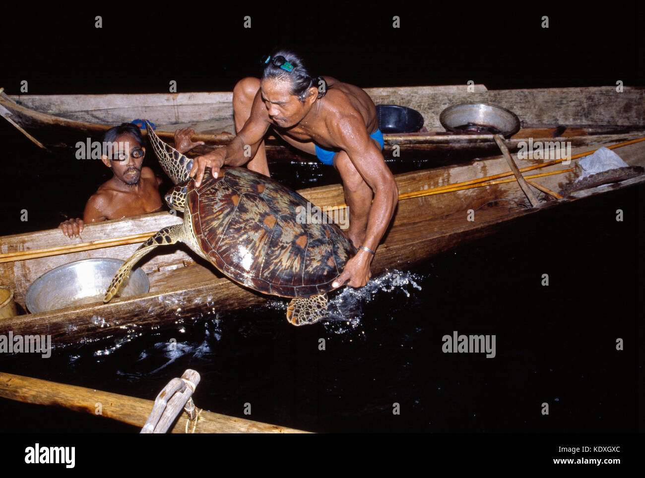 Indonesia. Sulawesi. Sama-Bajau people. Turtle hunters capturing a turtle. - Stock Image