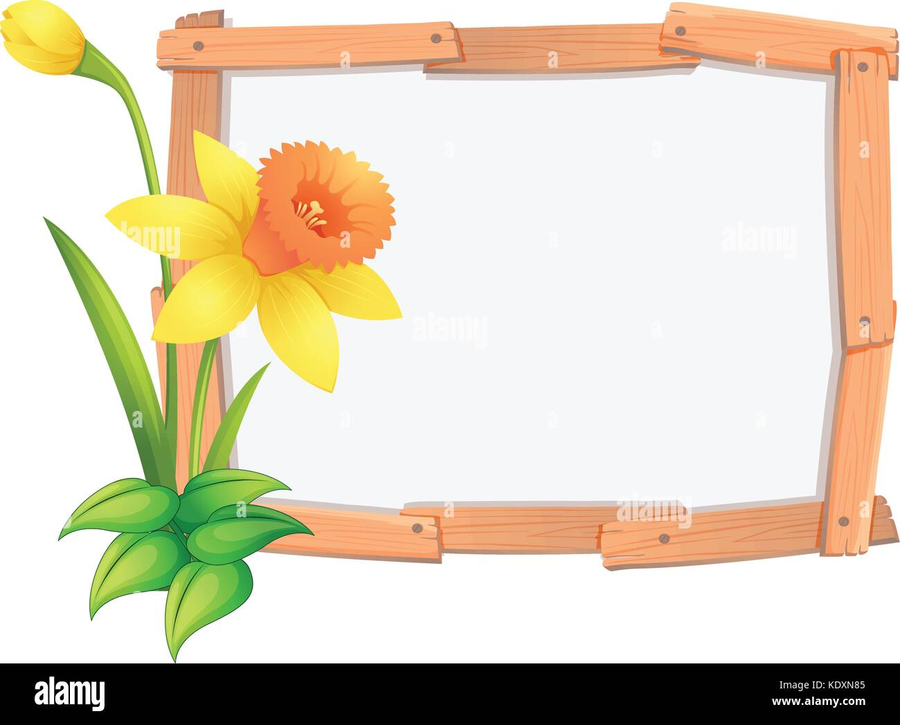 yellow daffodil flowers stock vector images alamy