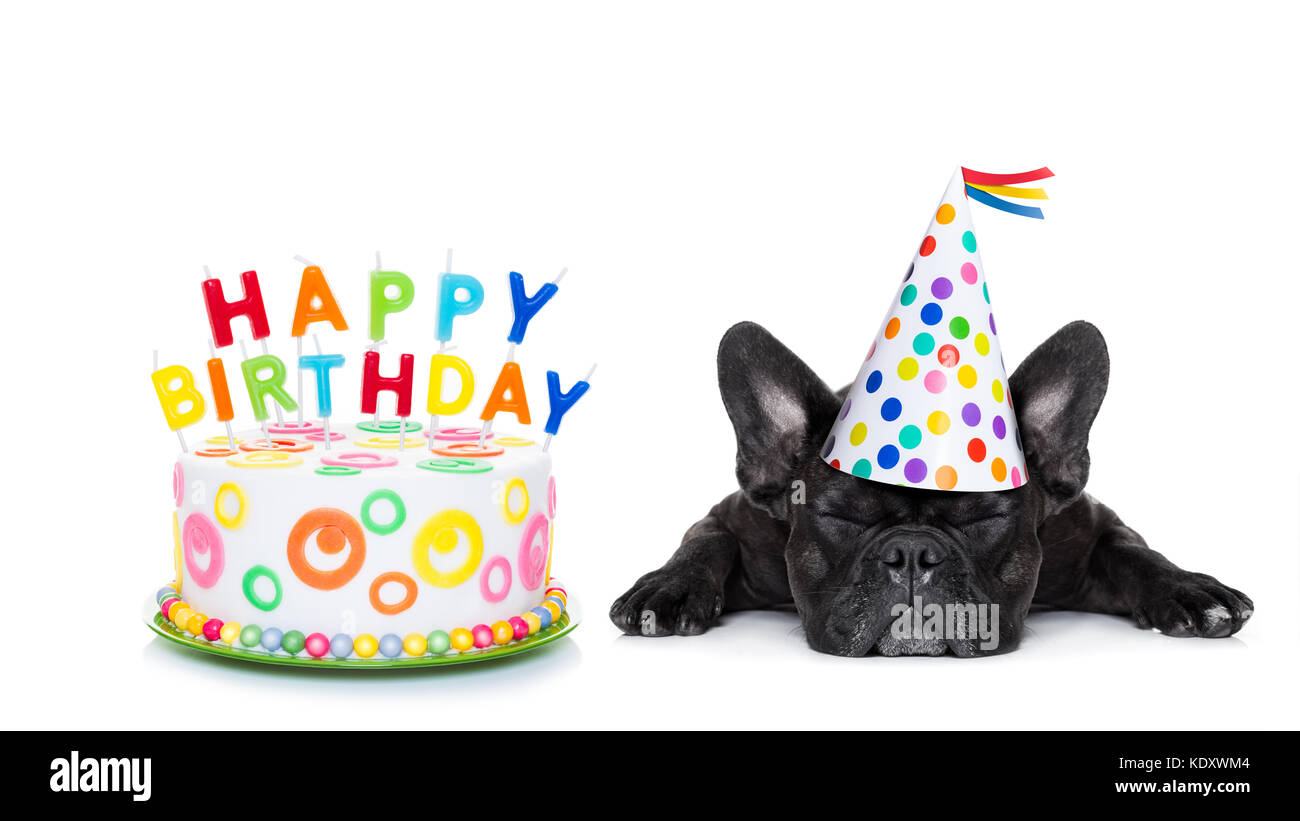 French Bulldog With Happy Birthday Cake And Candles A Party Hat Eyes Closed Isolated On White Background