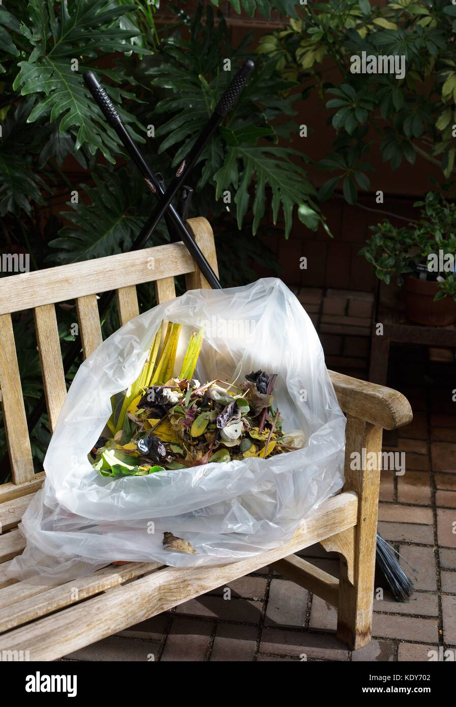 A bag of plant clippings in a greenhouse. - Stock Image