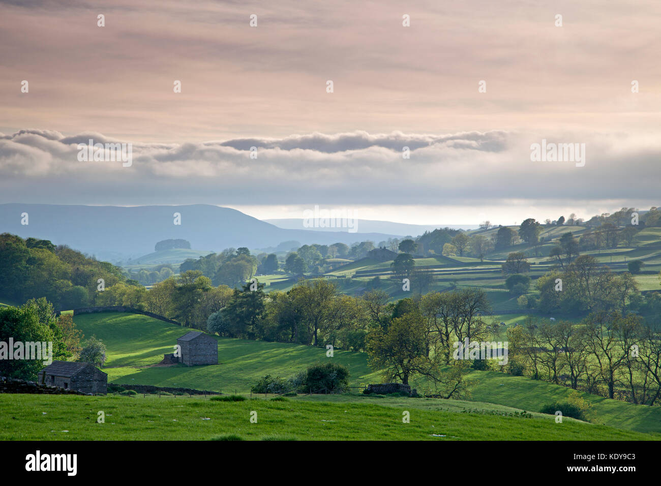 An evening view of Wensleydale in Yorkshire, taken from the A684 near Bainbridge. Stock Photo