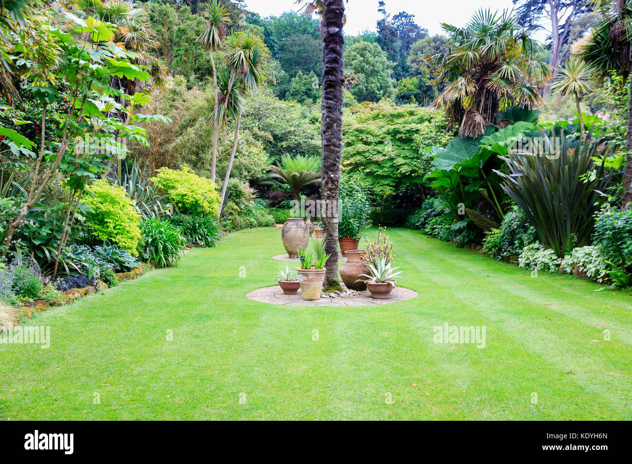 Exotic and subtropical planting surround the sunken lawn at Abbotsbury Subtropical Gardens, Dorset,UK - Stock Image