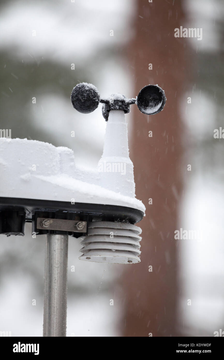 Weather station anometer and temperature guage covered in falling snow with snow falling around the station, Flintshire, - Stock Image