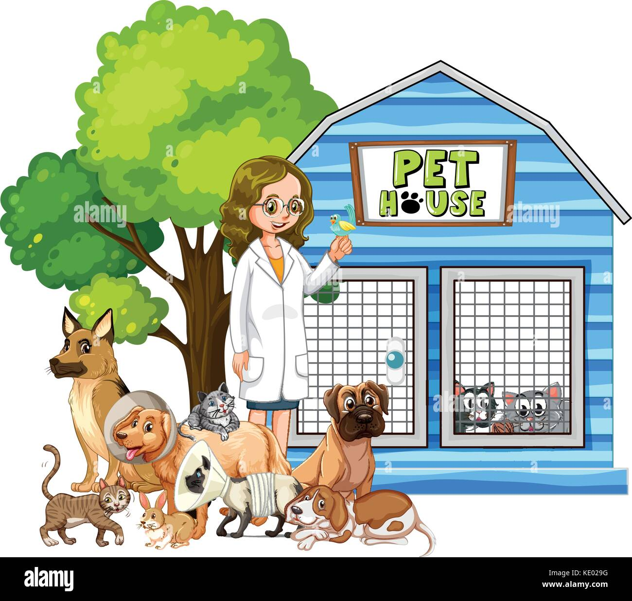 Vet and sick animals at pet house illustration - Stock Image
