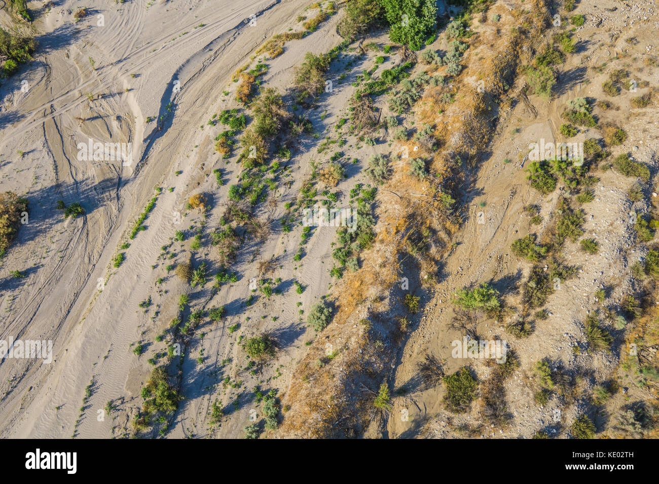 Green brush grows in the dry creek bed of an arid desert wash. - Stock Image