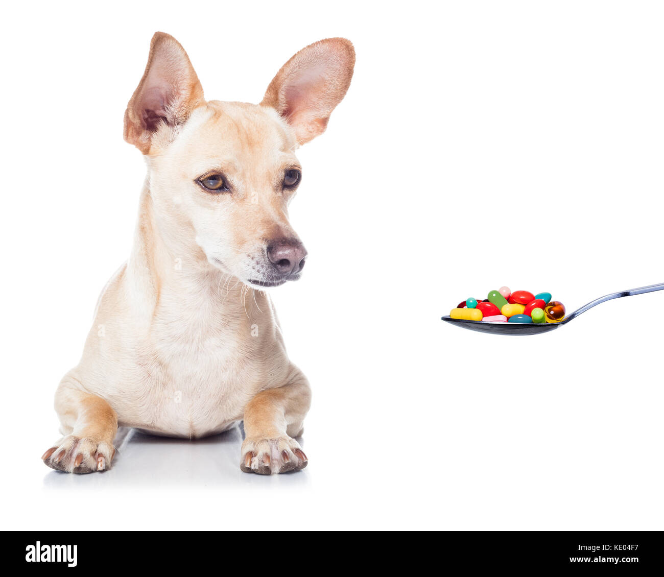 Spoon Suffer Stock Photos & Spoon Suffer Stock Images - Alamy