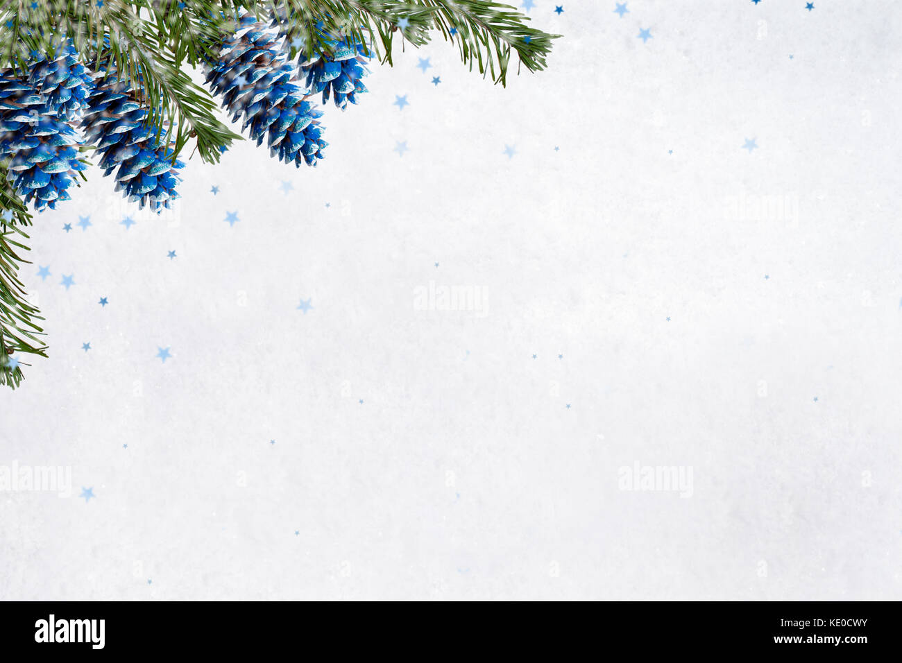 Christmas background. Painted blue fir cones and green branches are hanging from the top left on background of white - Stock Image