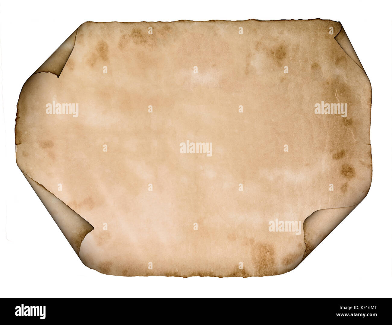old paper parchment scroll isolated on white background - Stock Image