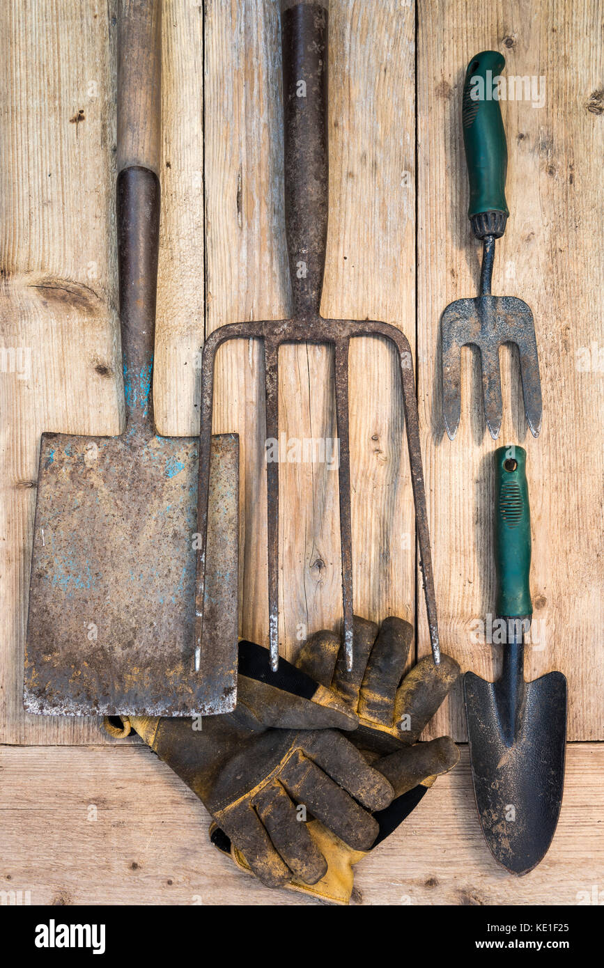 Old Garden Tools On Wooden Background. Overhead.   Stock Image