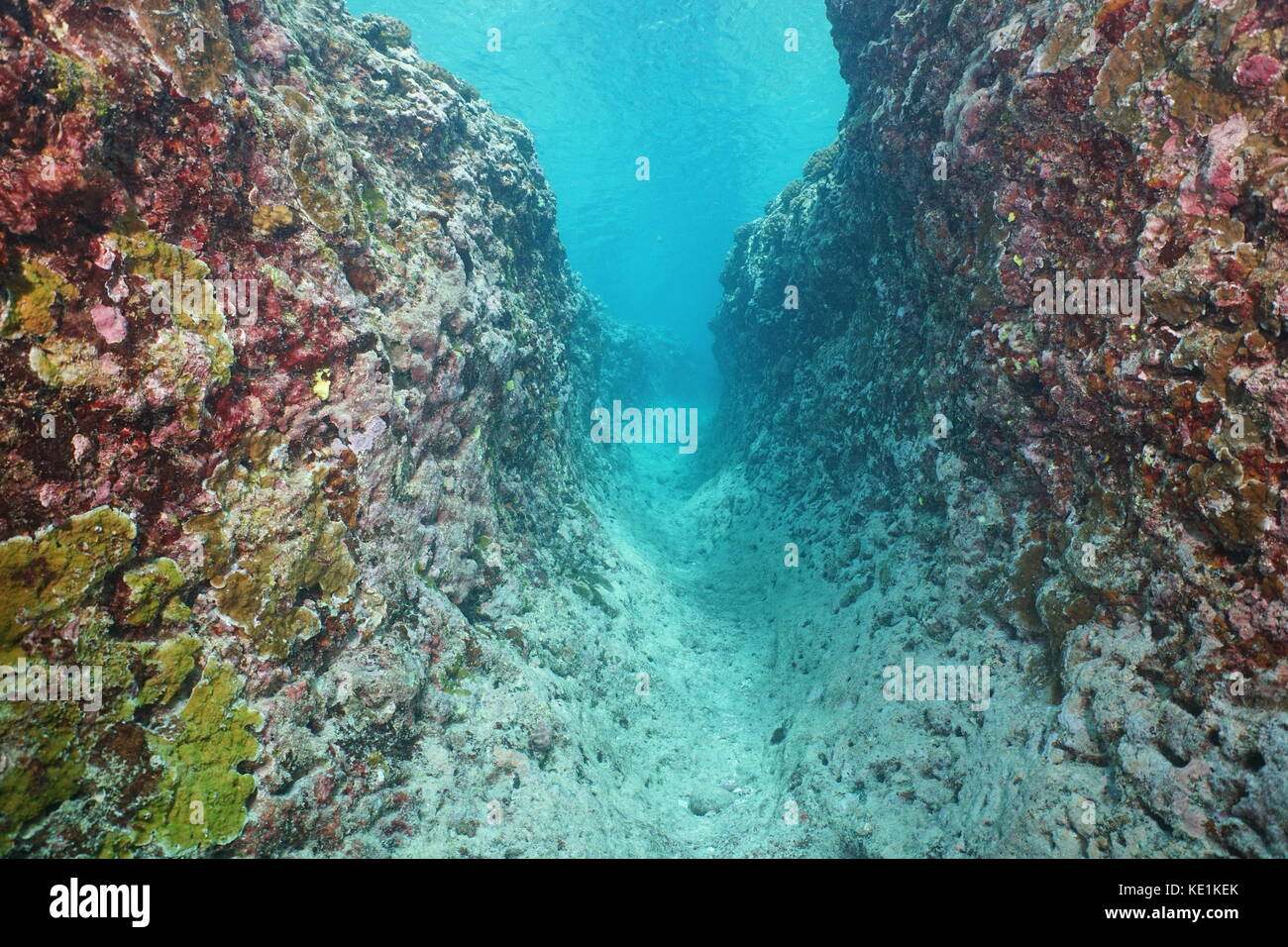 Underwater trench into the outer reef due to natural erosion, Huahine island, south Pacific ocean, French Polynesia, - Stock Image