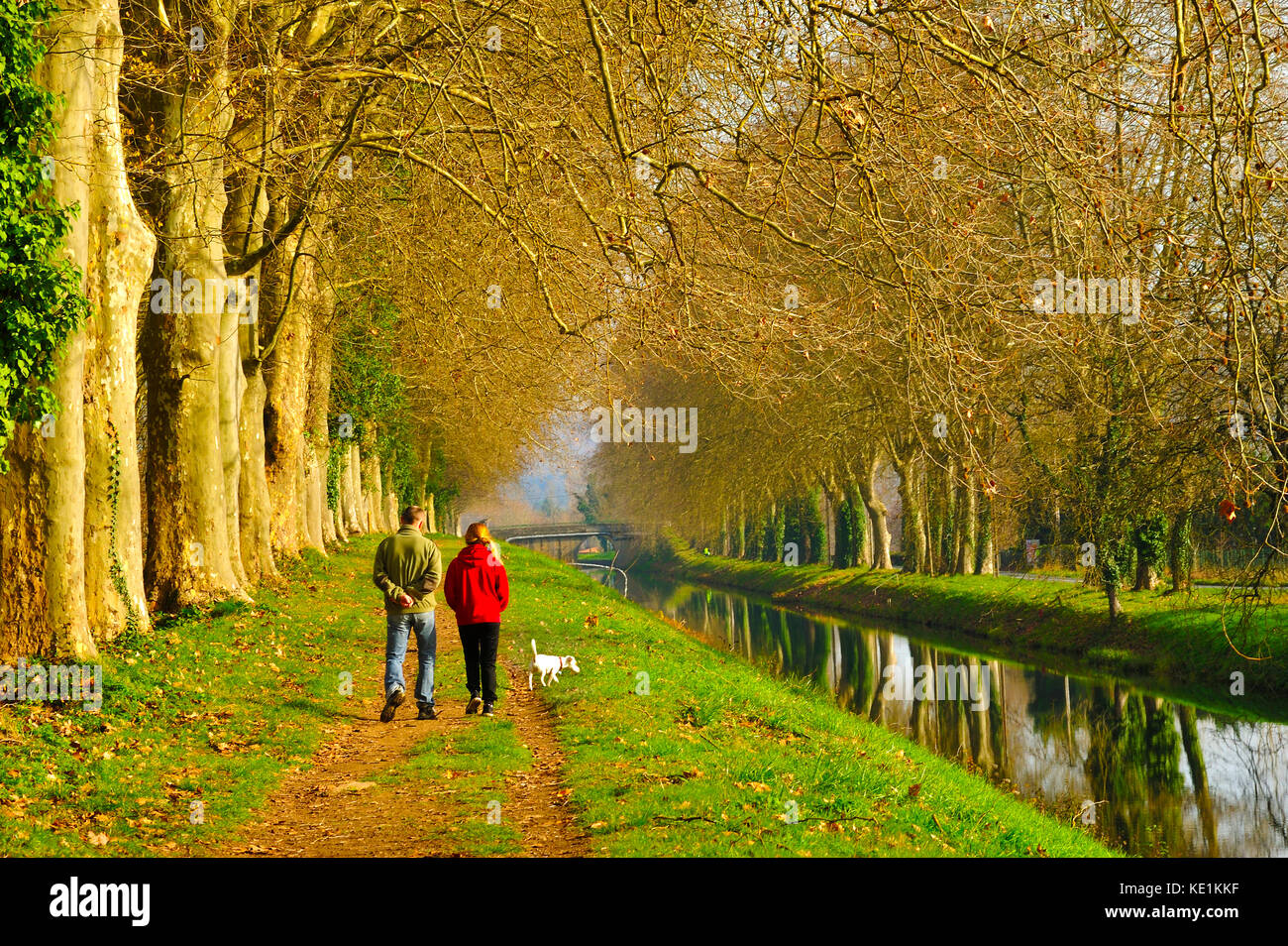 couple walking dog on towpath, Lalinde Canal at Lalinde, Dordogne Department, Aquitaine, France - Stock Image