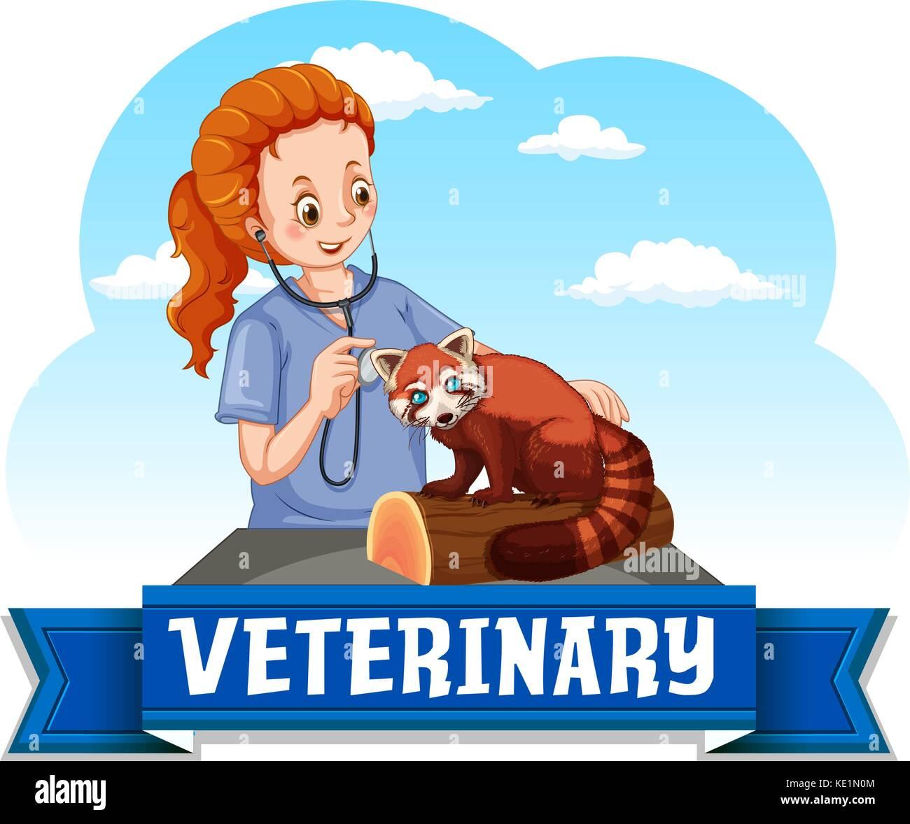 Female vet examining red panda illustration - Stock Vector