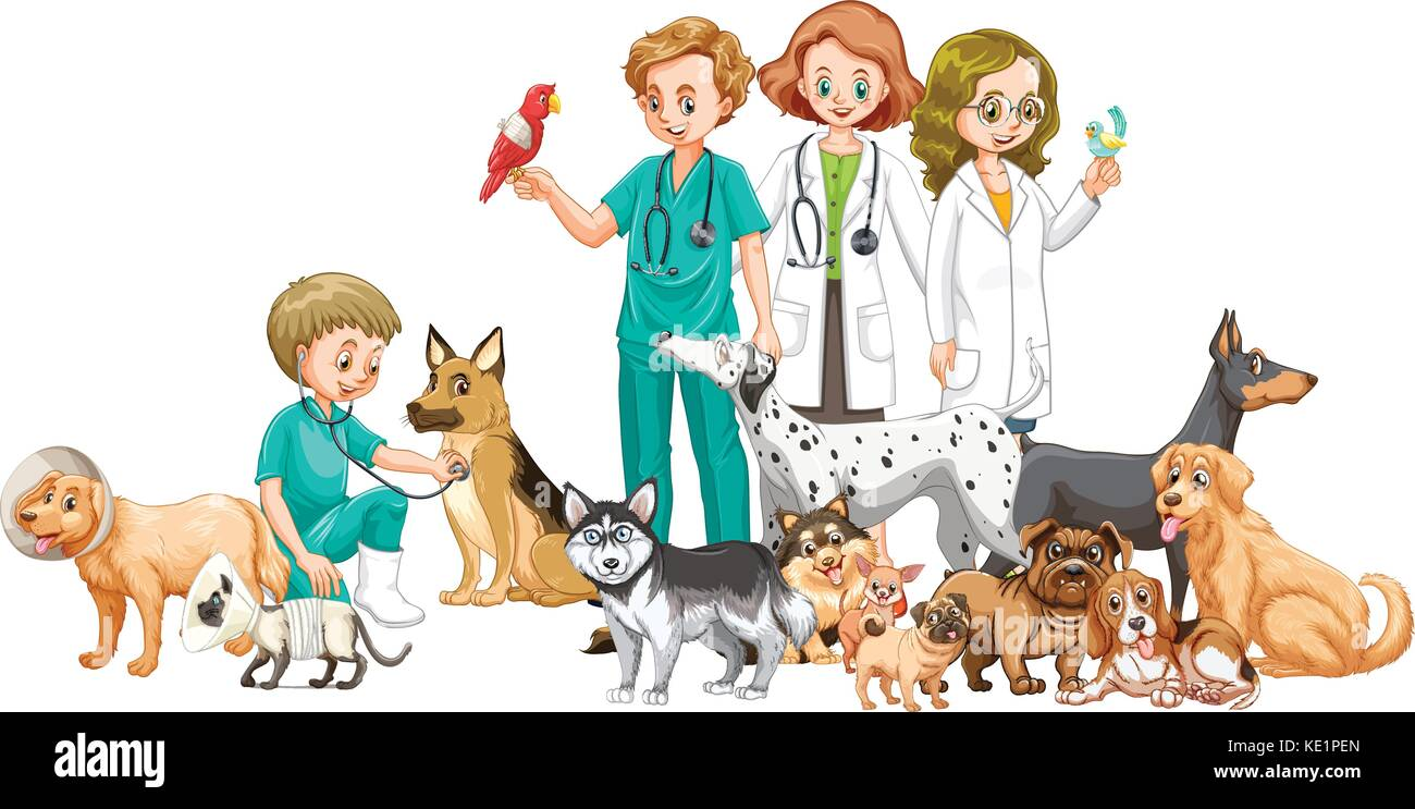 Vets and many animals illustration - Stock Vector