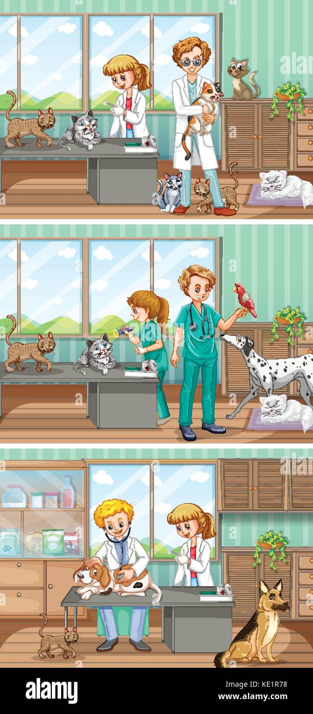 Vets working in the animal hospital illustration - Stock Vector