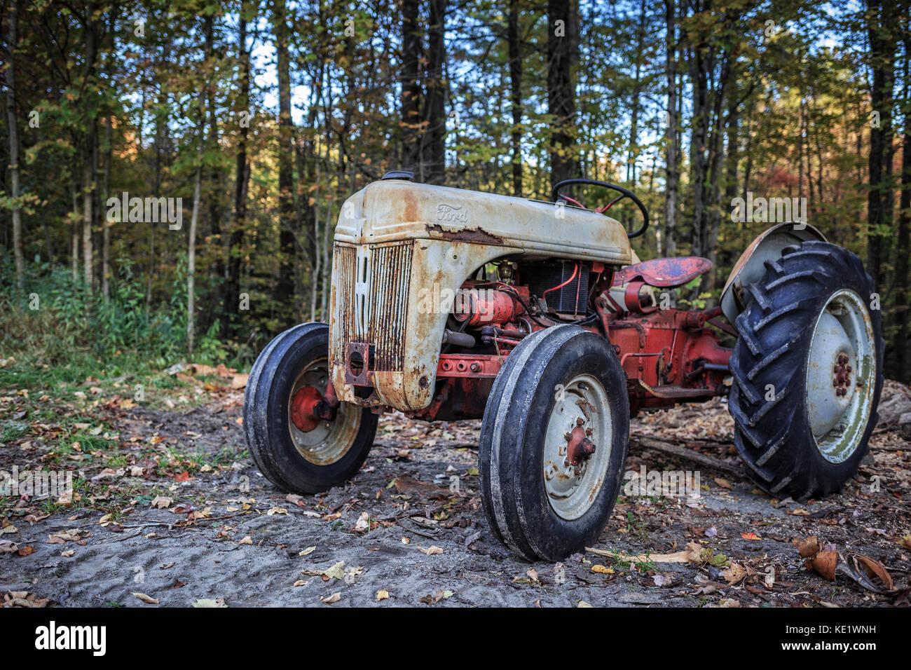 A Rusty Old Vintage Ford Farm Tractor In The Woods Springfield New Stock Photo Alamy