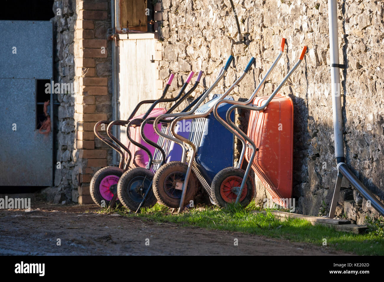 colorful wheelbarrows against stone wall outside stable - Stock Image