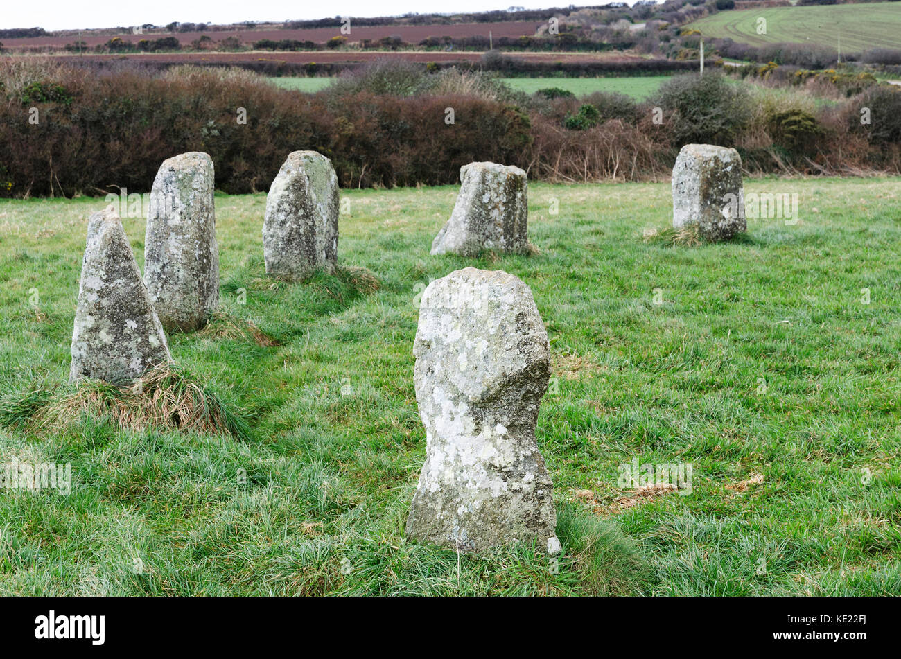 """"""" the merry maidens """" a late neolithic stone circle near st.buryan in cornwall, england, britain, uk. - Stock Image"""