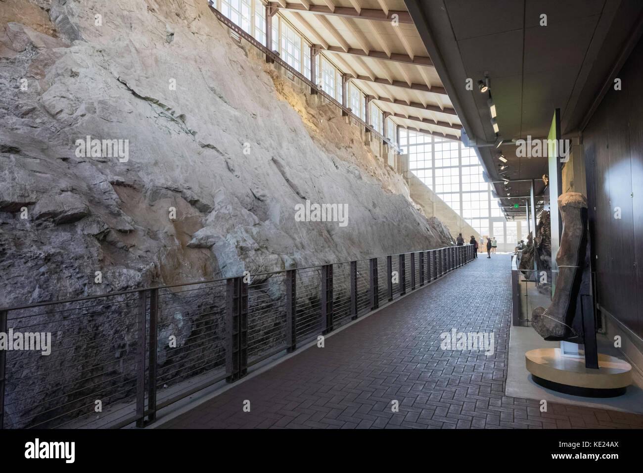 Dinosaur Quarry Exhibit, Dinosaur National Monument, Utah, USA - Stock Image