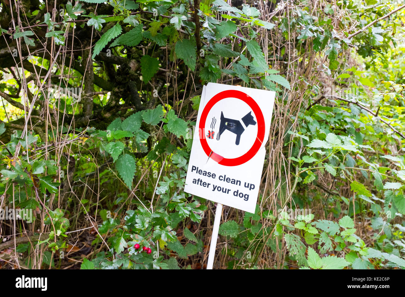 Request to clean up after your dog - Stock Image