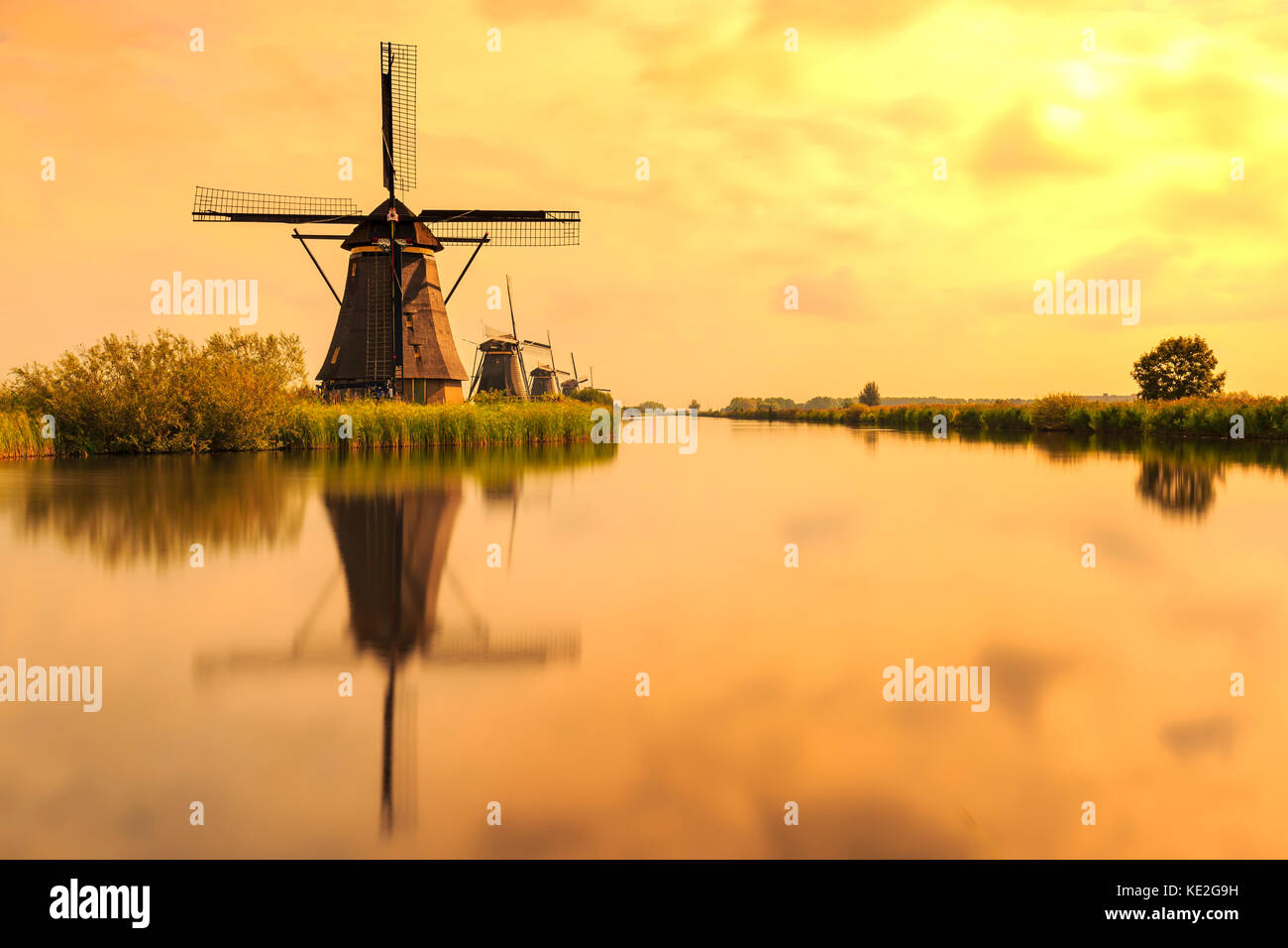 Traditional Dutch Windmills Kinderdijk, World Unesco heritage, on a sunny day late summer. Reflection visible on - Stock Image