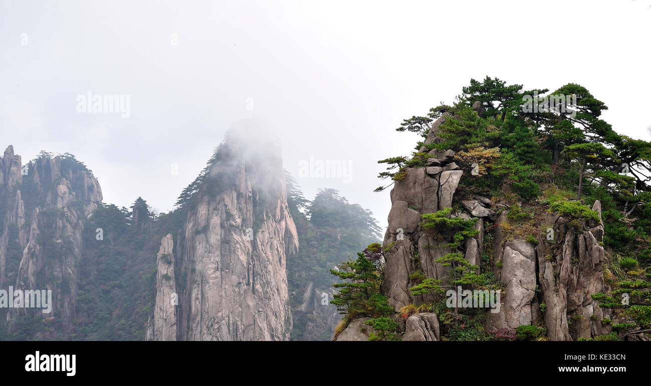 Huangshan Mountains And Trees - Stock Image