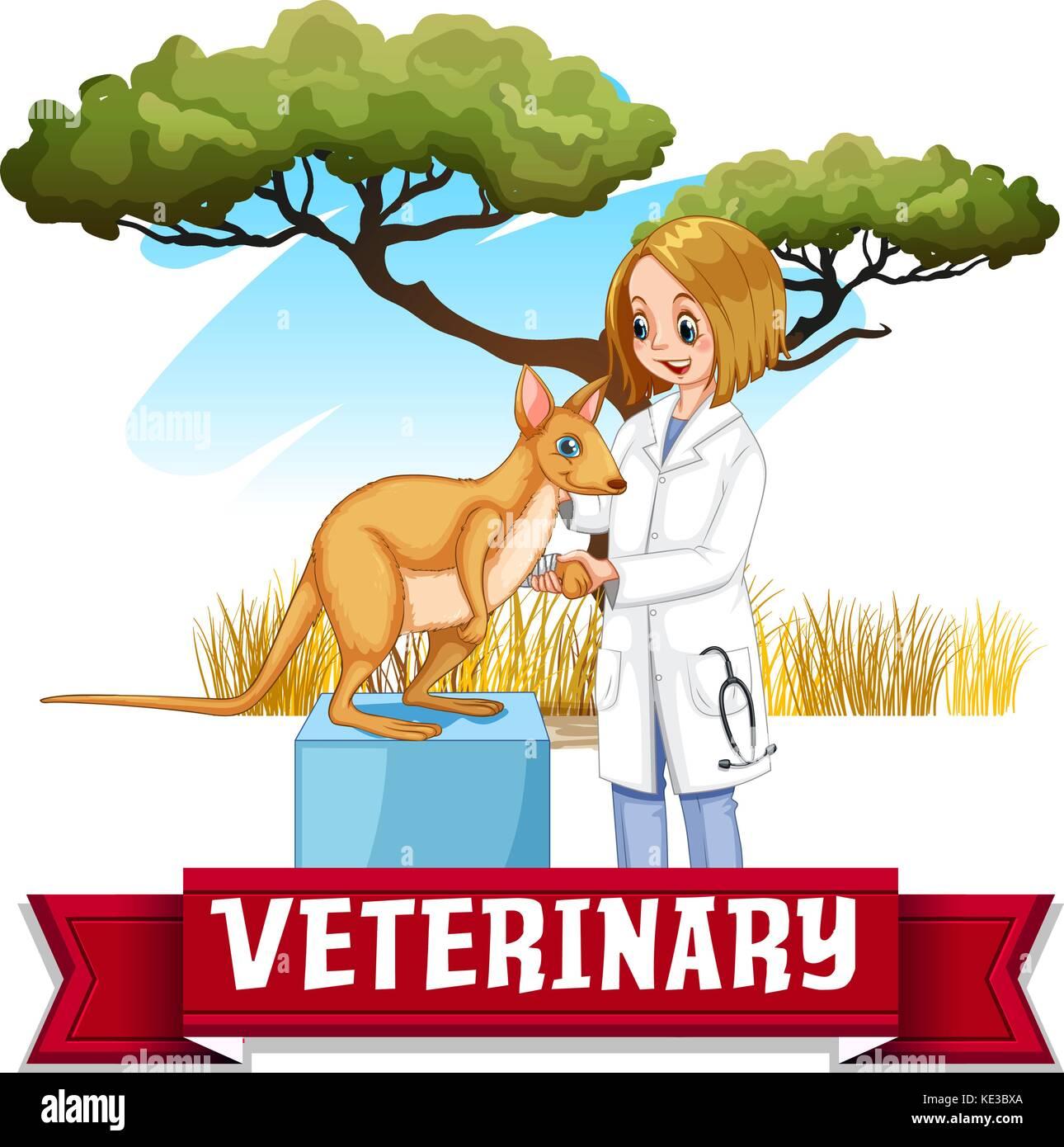 Female vet examining kangaroo in the park illustration - Stock Vector