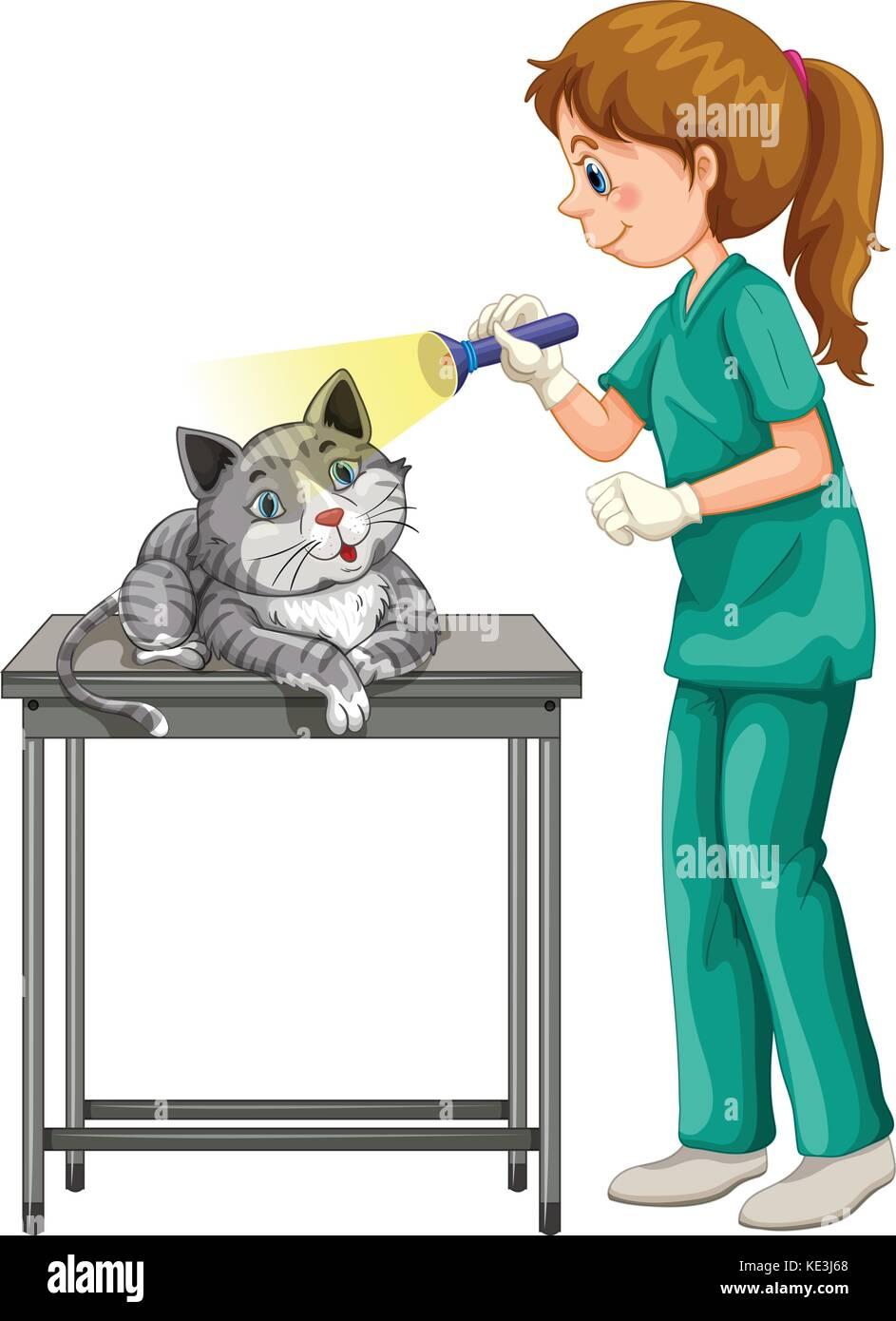 Vet checking up cats ear illustration - Stock Vector
