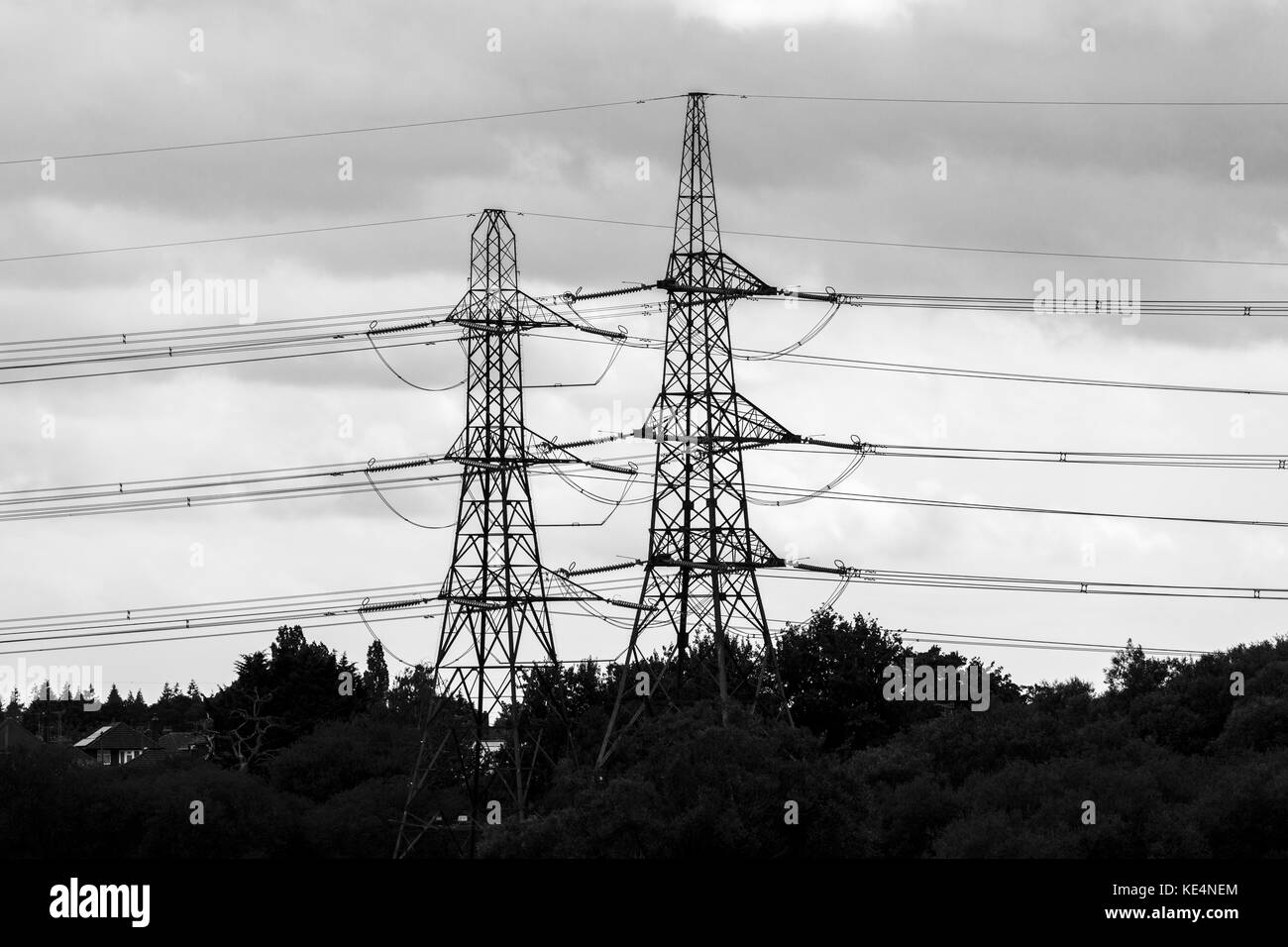 Two electricity pylons and power transmission cables in the countryside of the lower River Test, Totton & Ealing, - Stock Image
