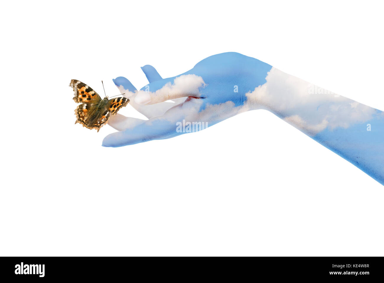 Womans hands letting the butterfly be free to go - Stock Image