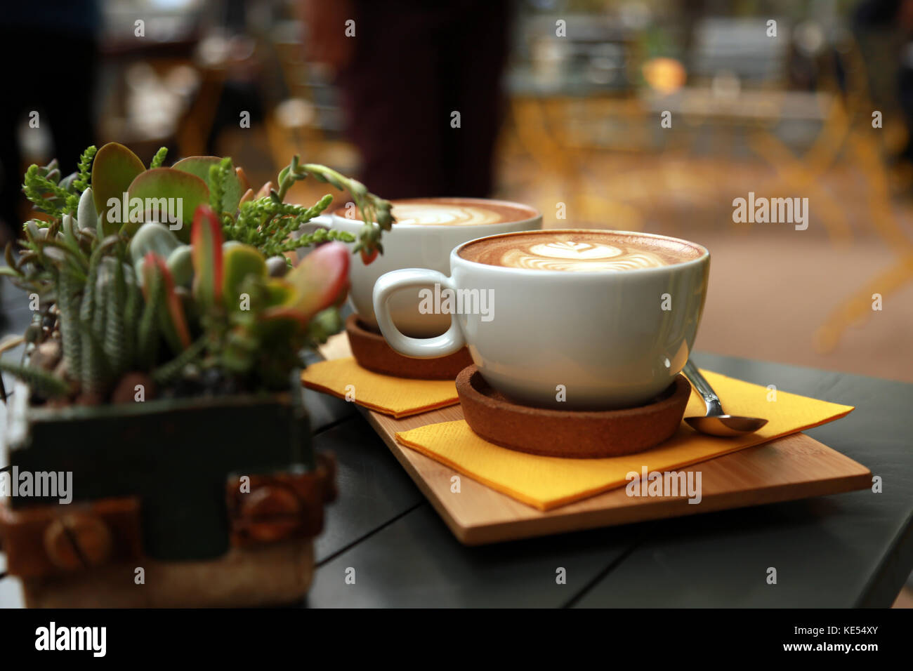White flat coffee with succulent plant on the table. - Stock Image