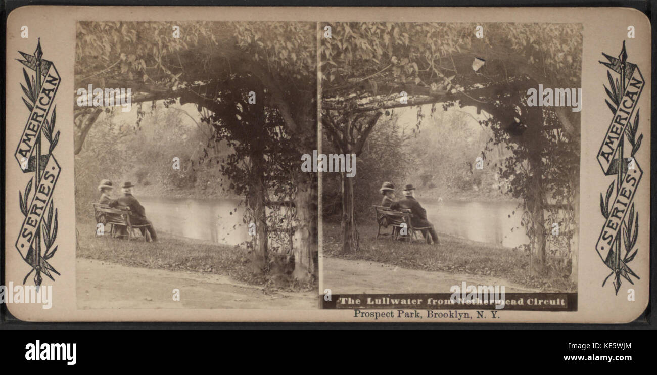 The Lullwater from Nethermead Circuit, Prospect Park, Brooklyn, N.Y, from Robert N. Dennis collection of stereoscopic Stock Photo