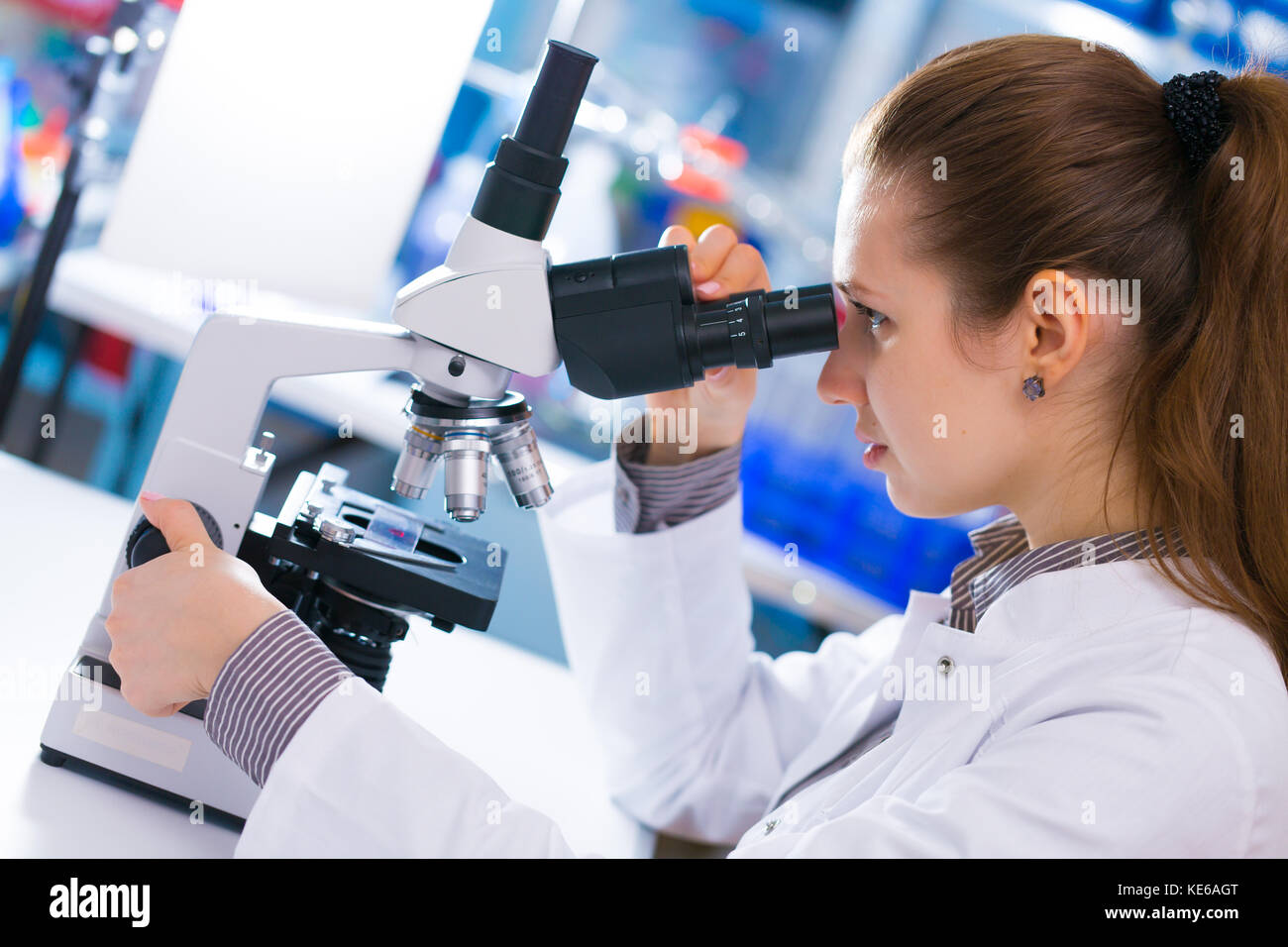 Young scientist studying Pathological microorganism  in microscope Stock Photo
