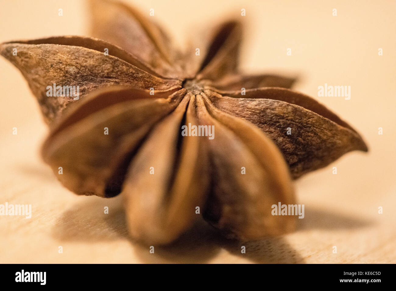 Star Anise - Stock Image