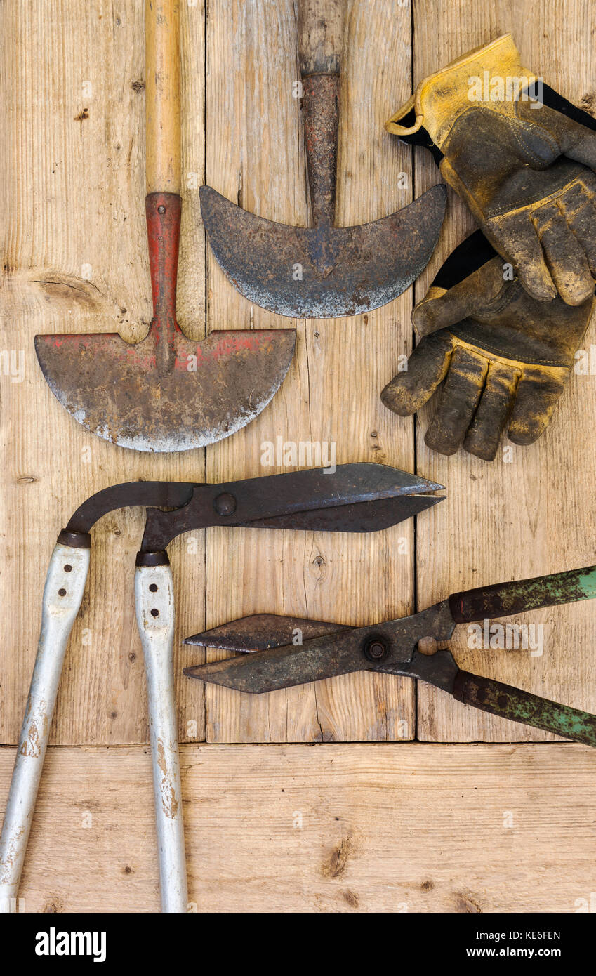 Lawn edging equipment, shears, edging knife.Old garden equipment. - Stock Image