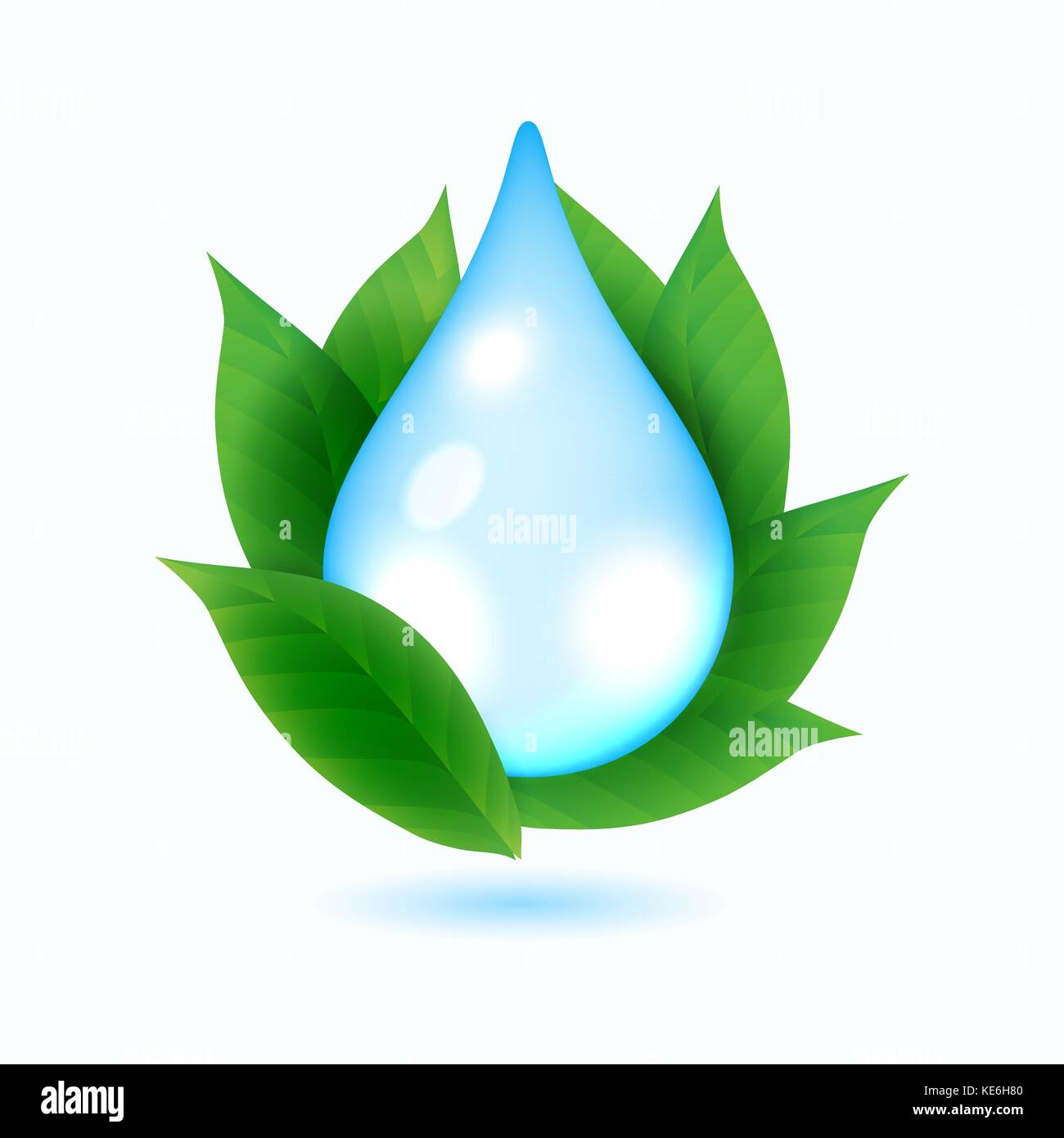 Drop of water and green leaves - Stock Vector