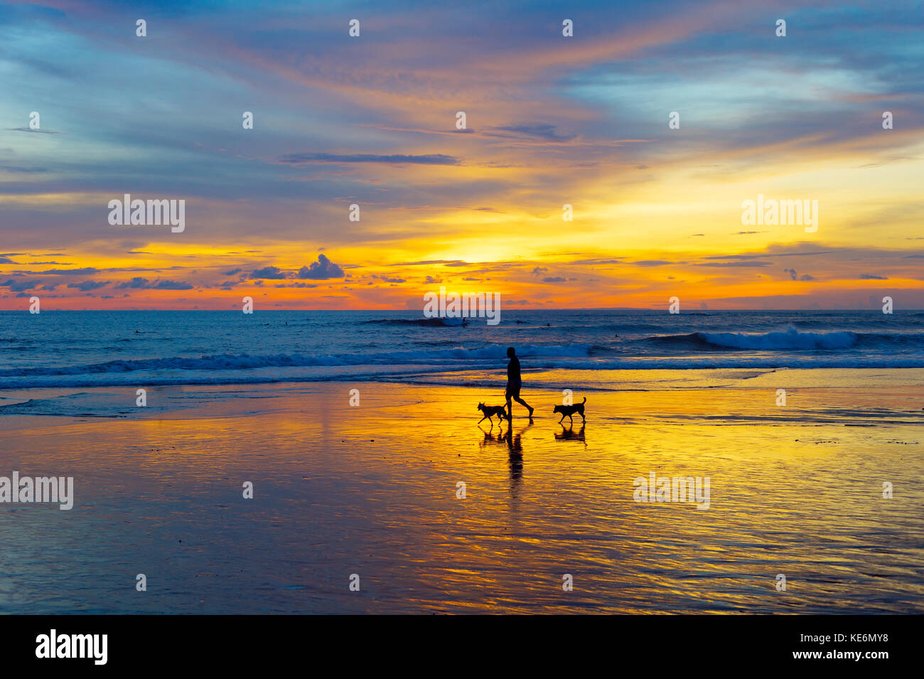 Silhouette of a man walking with the dogs on a beach at sunset. Bali island, Indonesia - Stock Image