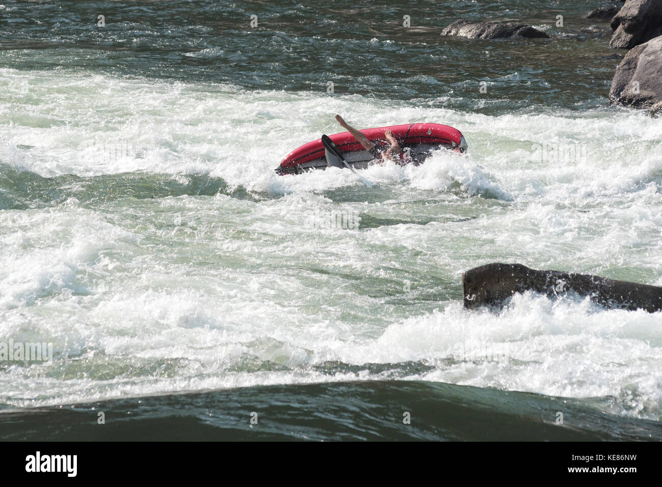 Inflatable kayak flipping in Snow Hole Rapids on Idaho's lower Salmon River. - Stock Image