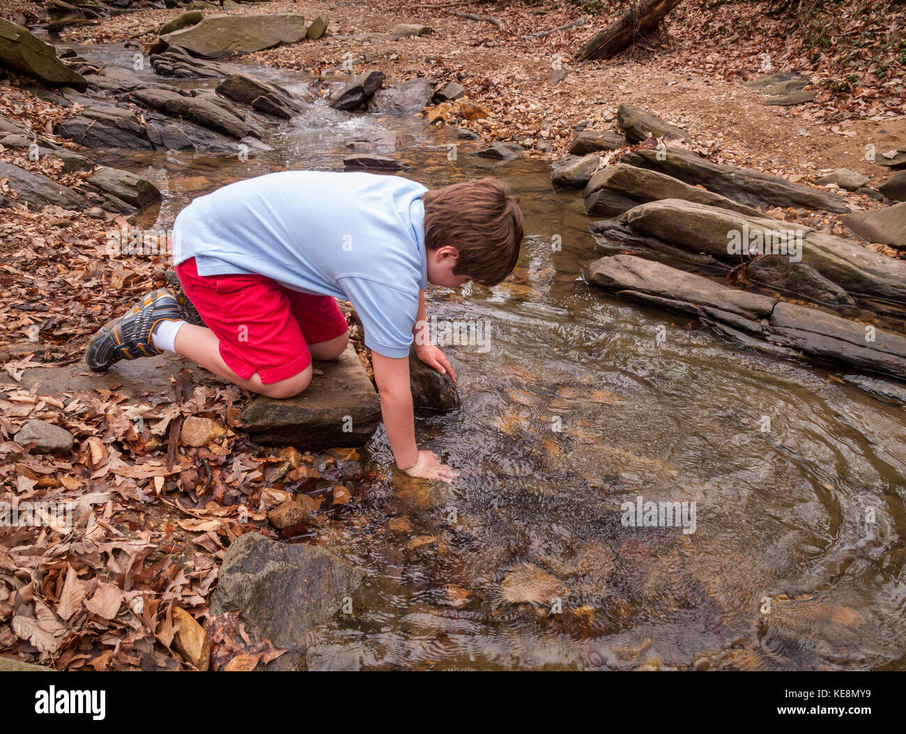 VIRGINIA, USA - Autistic boy, 11 years old, touches water in stream. - Stock Image