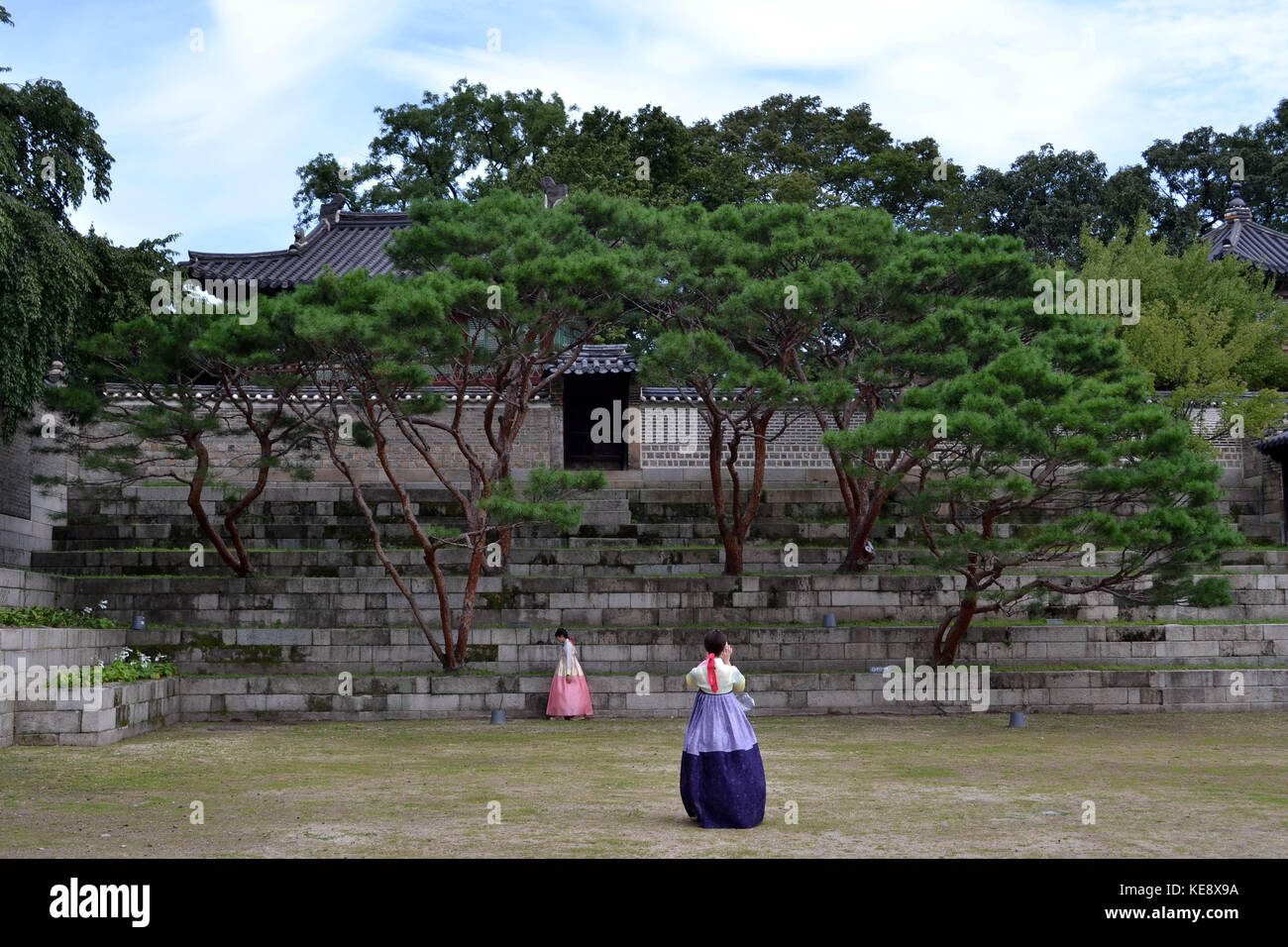 Girls in traditional clothes taking photo in front of trees around Seoul Eastern Palace (Changdeokgung). Pic was Stock Photo