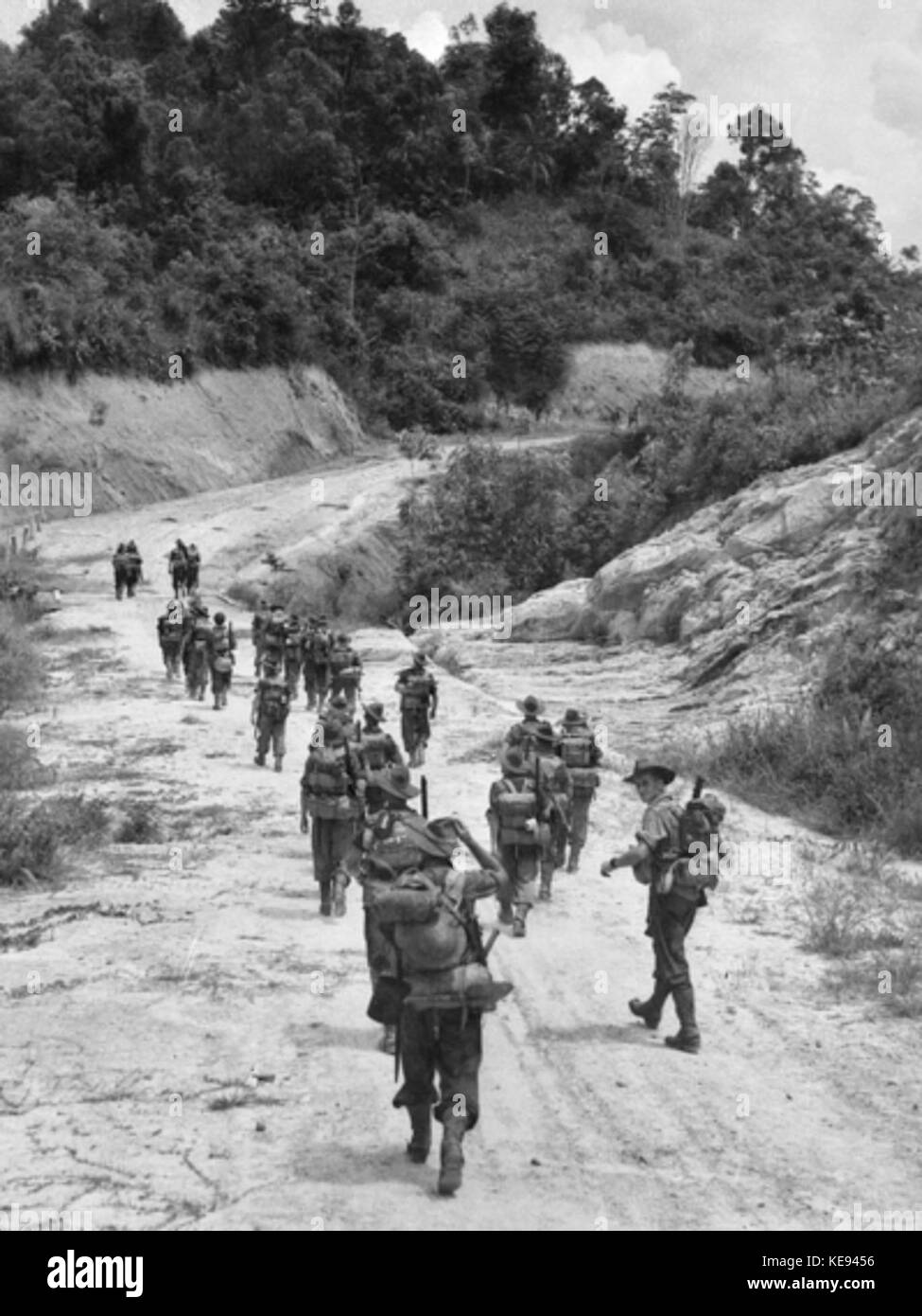 Members of B Company of the 2 2 Machine Gun Battalion moving along a road towards Brunei AWM 109273 - Stock Image
