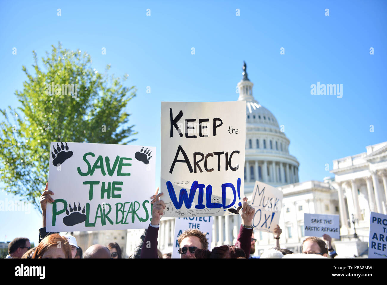 Protestors join Democratic senators during a rally opposing oil and gas drilling in the Arctic National Wildlife - Stock Image