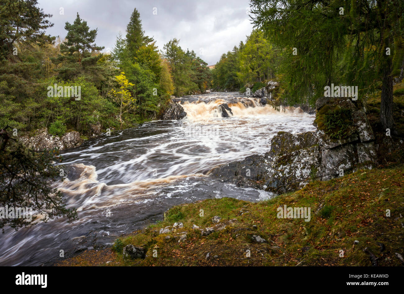 Cassley Falls or Achness Waterfall on the River Cassley near Rosehall, Sutherland, Scottish Highlands, UK Stock Photo